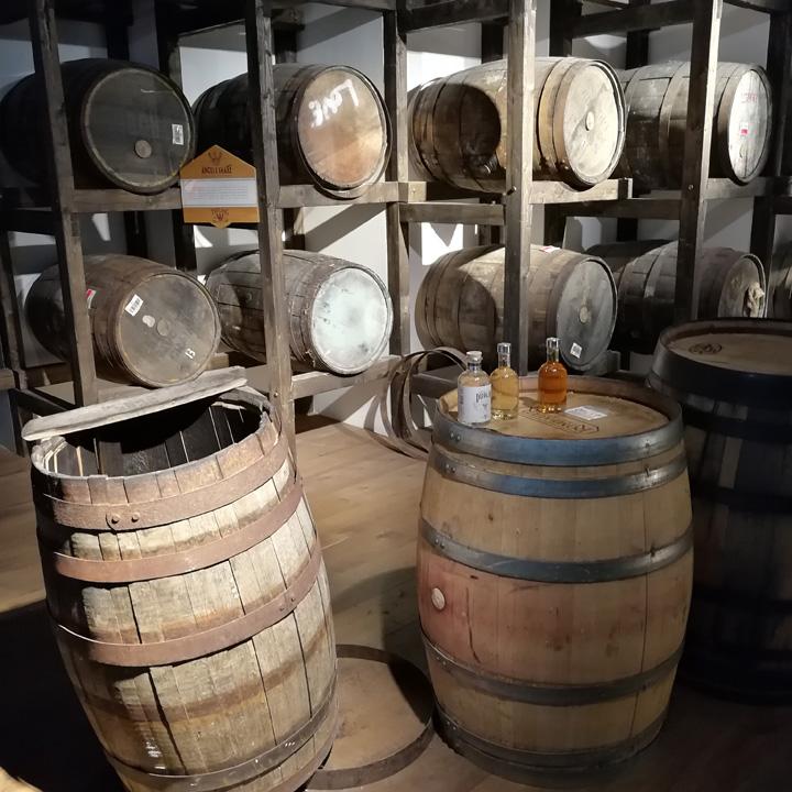 Teeling Whiskey Distillery (The Spirit of Dublin Irish Whisky Tour Experience Triple Distilled Dram BarleyMania)