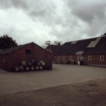 Distillery Tour and Whisky Tasting at Stauning in Denmark (Danish Single Malt Peated Rye Diageo Experience)