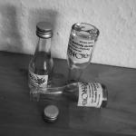 3x Single Malt Scotch Whisky by DeinWhisky.de (Ben Nevis Secret Speyside Tomatin Tasting Notes Blog BarleyMania)